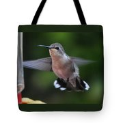 Female Anna's Hummingbird Tote Bag