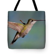Female Magnificent Hummingbird At Flower Tote Bag