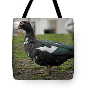 Female Muscovy Duck Tote Bag