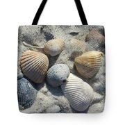 Fernandina Shells  Tote Bag