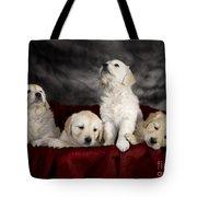 Festive Puppies Tote Bag