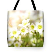 Field Of White Blossoms Tote Bag