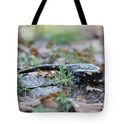 Fire Salamander Fog Droplets Tote Bag