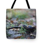Fire Salamander Tote Bag
