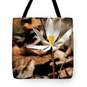 First Sign Of Spring 2 Tote Bag