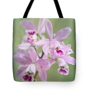 Five Beautiful Pink Orchids Tote Bag