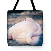 Flamingo 2b Tote Bag