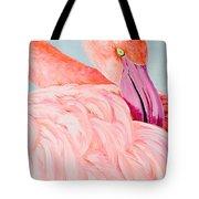 Female Flamingo In The Bahamas Tote Bag