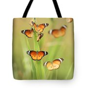 Flock Of Plain Tiger Danaus Chrysippus Tote Bag by Alon Meir