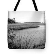 Florida Au Natural Bw Tote Bag