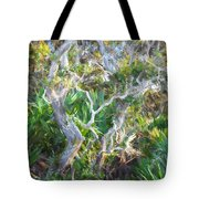 Florida Scrub Oaks Painted  Tote Bag