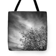Flowering Almond Tote Bag