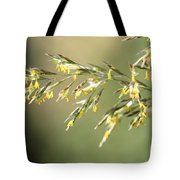 Flowering Brome Grass Tote Bag