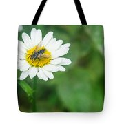 Fly On Daisy 3 Tote Bag