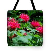 Flying Bee With Bee Balm Flowers Tote Bag