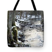 Forest Lights Tote Bag