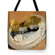 Fossil Clam With Calcite Crystals Tote Bag