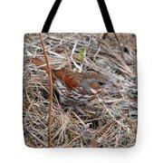 Fox Sparrow 2 Tote Bag
