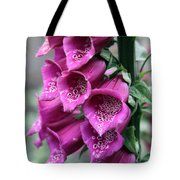 Foxglove Digitalis Spcial Tote Bag