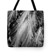 Foxtail Blowing In The Wind Tote Bag