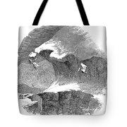 France Mont Blanc, 1851 Tote Bag