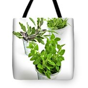 Fresh Herbs In Pots Tote Bag