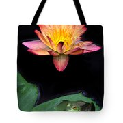 Frog And Waterlily Tote Bag
