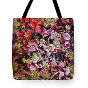 Frost On Autumn Tundra Tote Bag