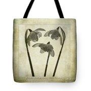 Galanthus Nivalis Flore Pleno Tote Bag