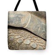 Galapagos Turtle Tote Bag