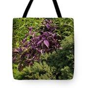 Garden Color At Woodward Park 8f Tote Bag
