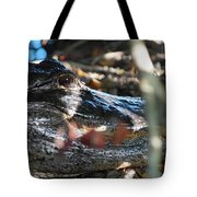 Gator In The Shade Tote Bag