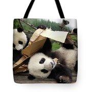 Giant Panda Ailuropoda Melanoleuca Pair Tote Bag