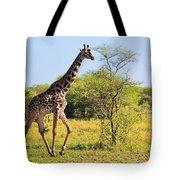 Giraffe On Savanna. Safari In Serengeti Tote Bag