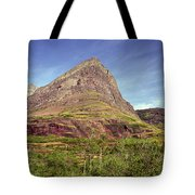 Glacier National Park 1 Tote Bag