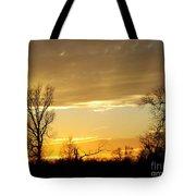 Golden Sunset 61 Tote Bag