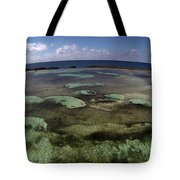 Grand Bahama Island Tote Bag