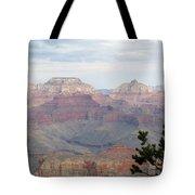 Grand Canyon View Tote Bag