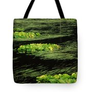 Grasses And Lilies In Beaver Pond Tote Bag