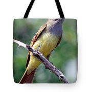 Great Crested Flycatcher With Captured Tote Bag