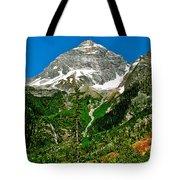 Great Glacier Trail In Glacier Np-british Columbia Tote Bag