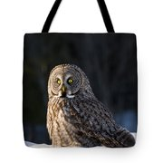 Great Gray Owl Pictures 789 Tote Bag