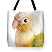 Green-cheeked Conure Pineapple P Tote Bag