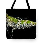 Green For Shrimp Tote Bag