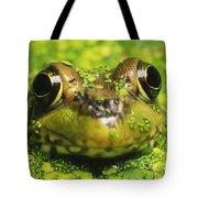 Green Frog Hiding In Duckweed Tote Bag