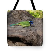 Green Jay Tote Bag