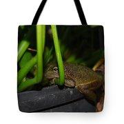 Green Tree Frog Tote Bag