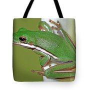 Green Treefrog Tote Bag