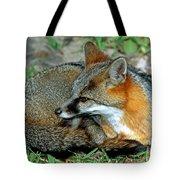 Grey Fox Tote Bag