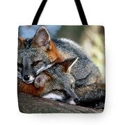 Grey Foxes Tote Bag